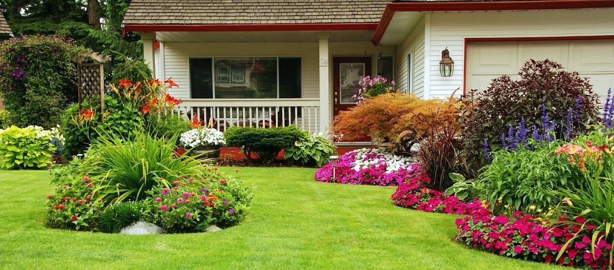 5 conseils pour réussir son jardin
