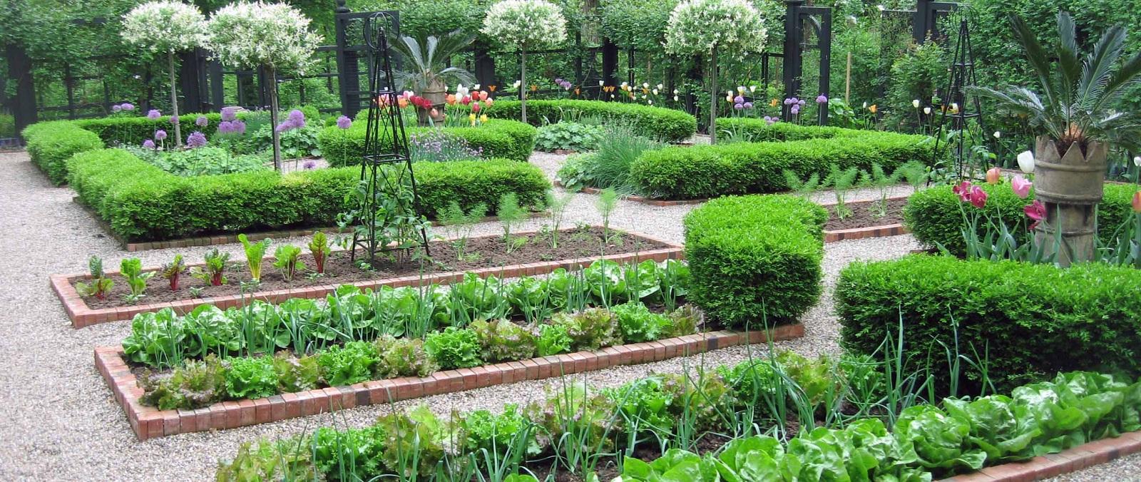 faire son jardin potager conseils pour avoir un beau jardin. Black Bedroom Furniture Sets. Home Design Ideas