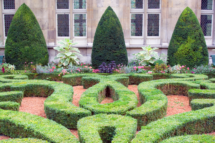 11 juillet 2016 conseils pour avoir un beau jardin. Black Bedroom Furniture Sets. Home Design Ideas